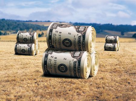 dollar_pole